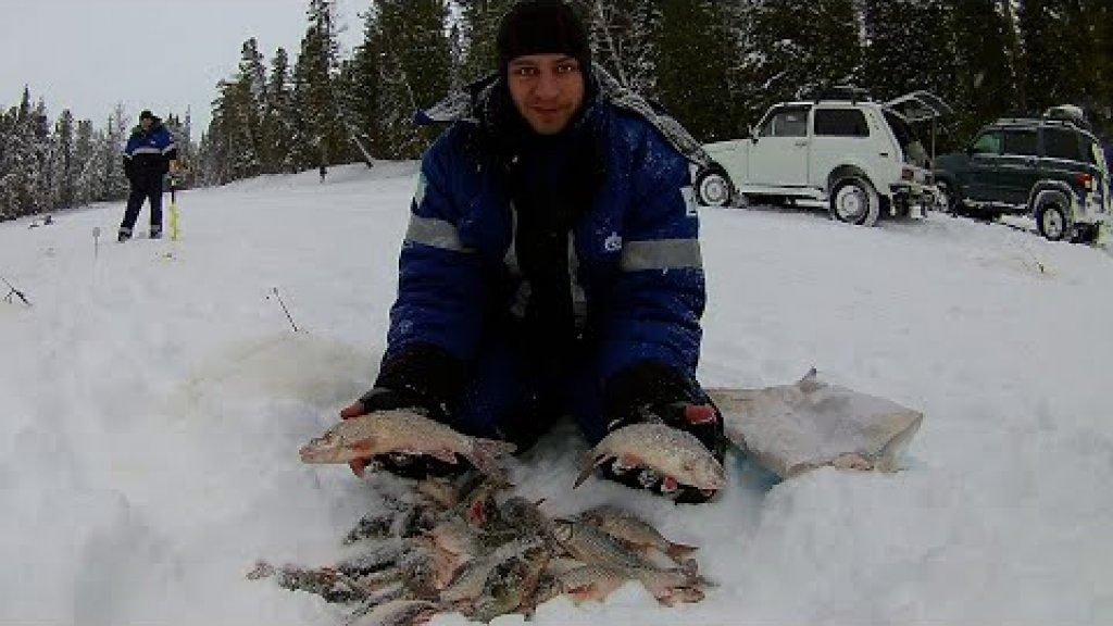 Нарвались на горбачей перед рождеством. После отправились за язем. Зимняя рыбалка 2020