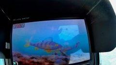 Зимняя рыбалка с дешёвой подводной камерой. Ловим вприглядку