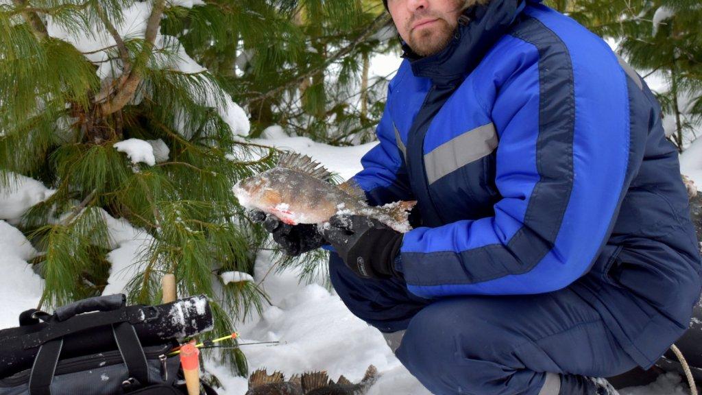 Рыболовная вылазка «За Лобазовским окунем»!
