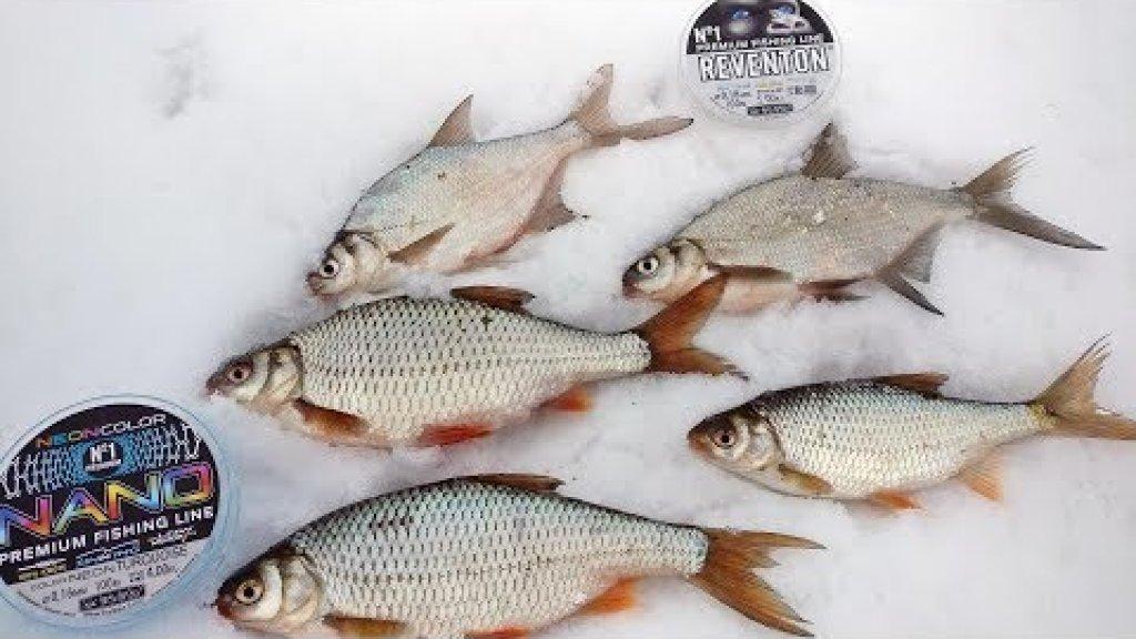 Клев сороги в глухозимье. Подледная рыбалка в феврале