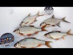 Клев крупной сороги в глухозимье, подледная рыбалка в феврале