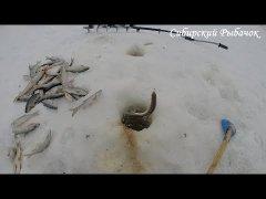 Удачная рыбалка на далёких перекатах в СИБИРИ I Рыбалка 2020!