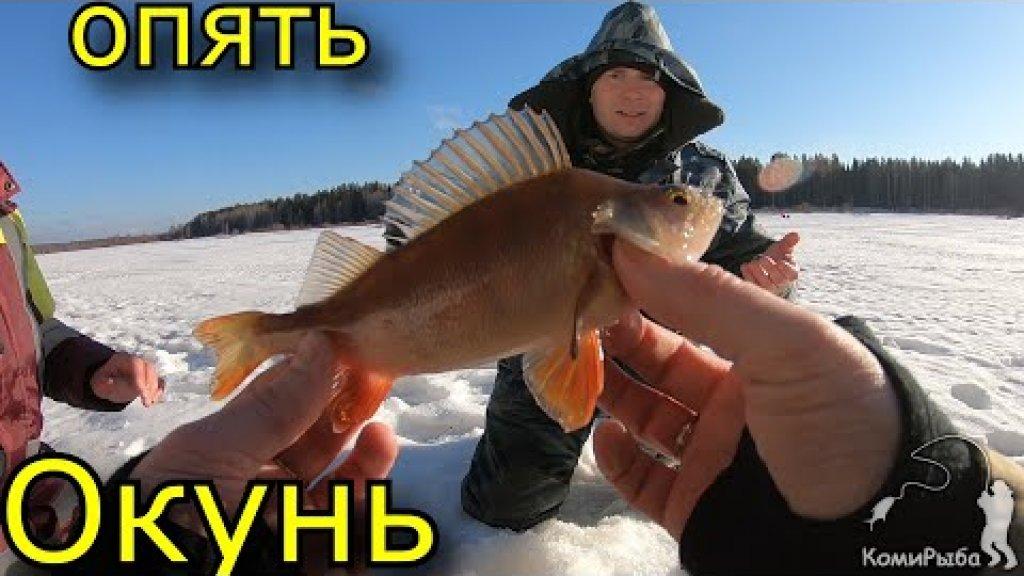 Зимняя рыбалка 2020. Опять окунь