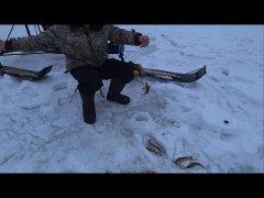 Первый раз на зимней рыбалке! Река пижма / коми республика.