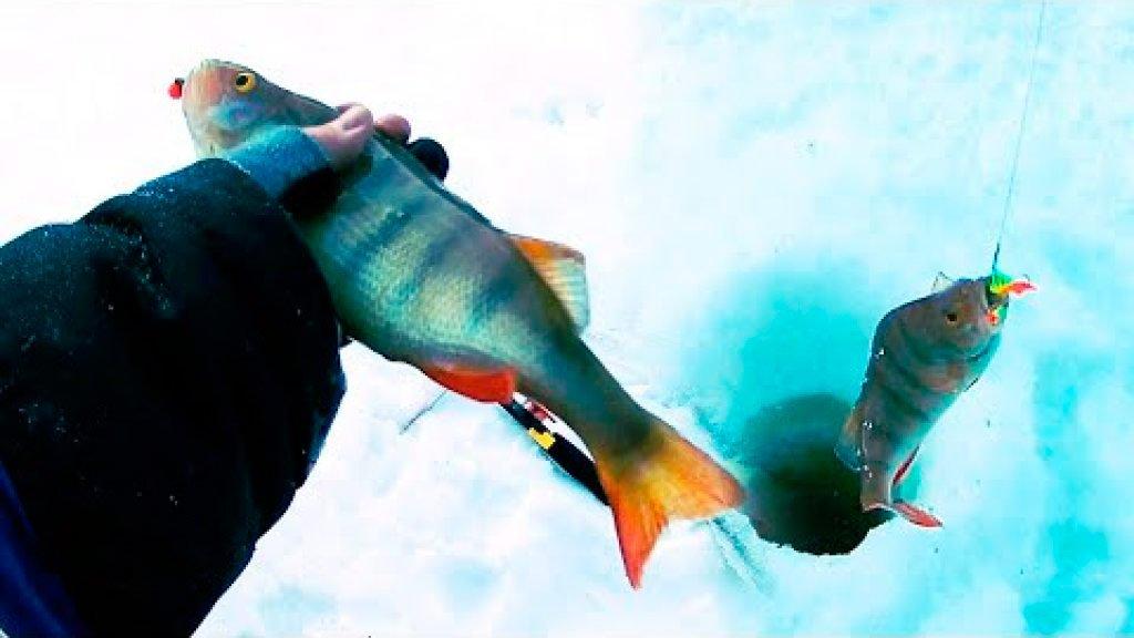 Кто ищет, то всегда найдет. Великолепная рыбалка в -30. Начало