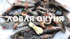 Ловля окуня зимой на безмотылку и блесну / зимняя рыбалка 2020