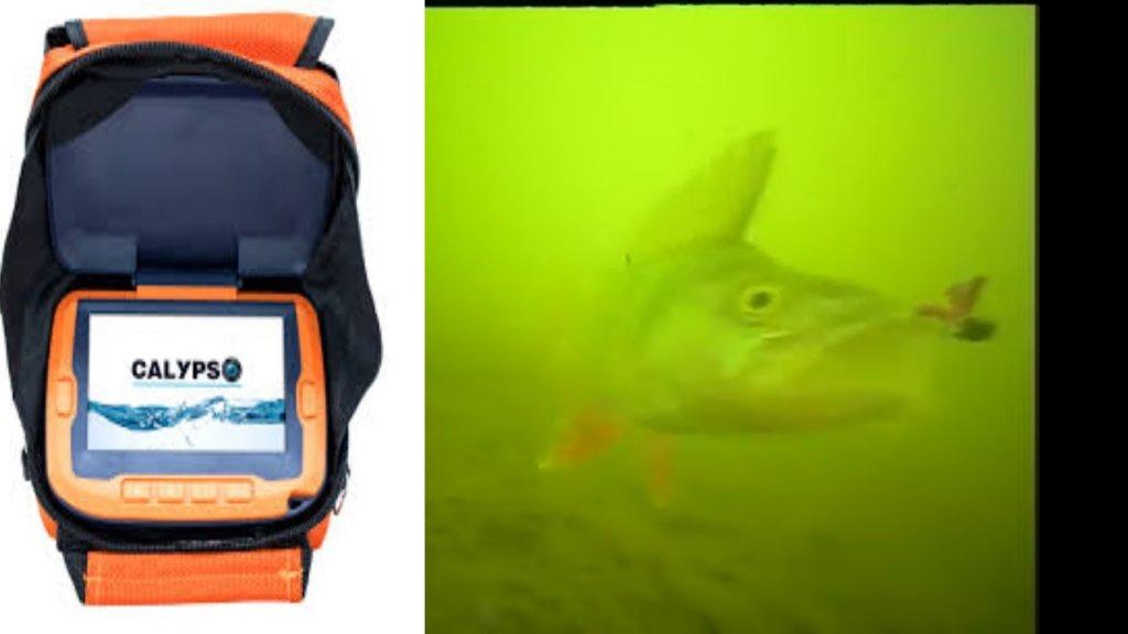 камера CALYPSO UVS - 03 подводные съемки в глухозимье