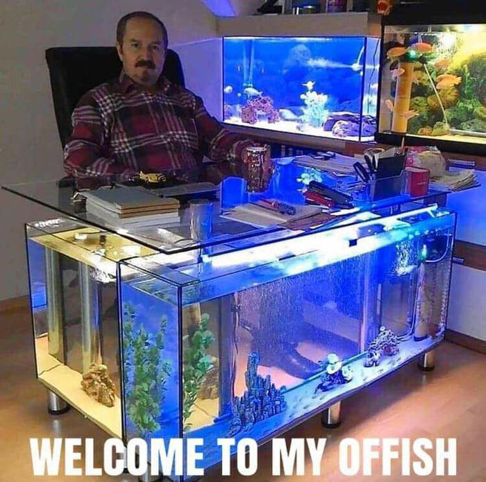 Когда ты Одмин рыболовного портала