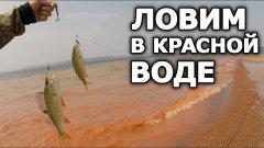 """""""Сказочная"""" рыбалка! Нептун не обидел! Хорошая рыбалка на водохранилище на щуку и окуня!"""