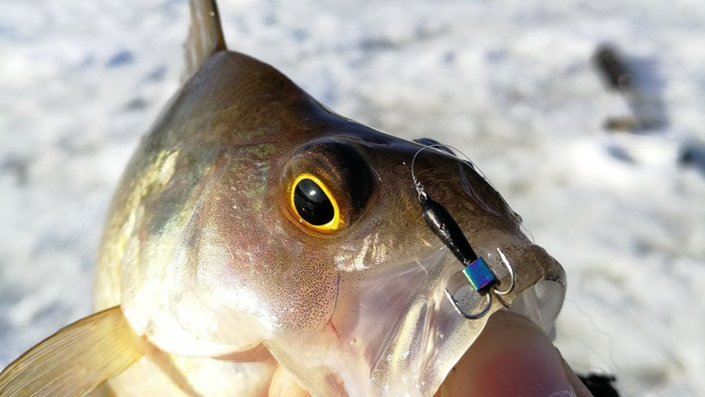 Рыбалка на малой речке