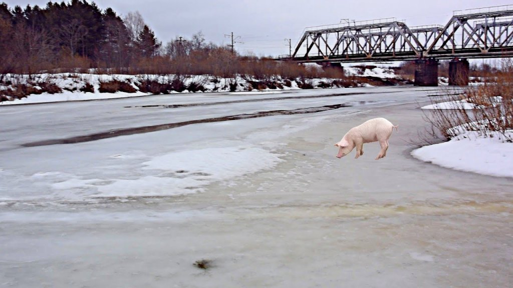Последний лёд.. Рыба, ты где? Кругом одни свиноты!