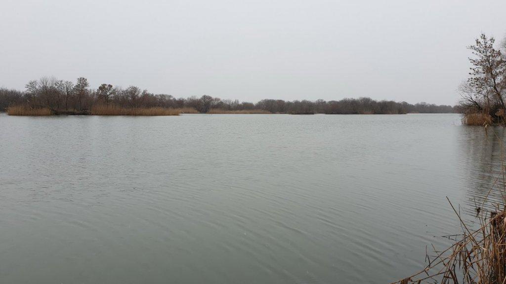 Быстрая рыбалка в черте города