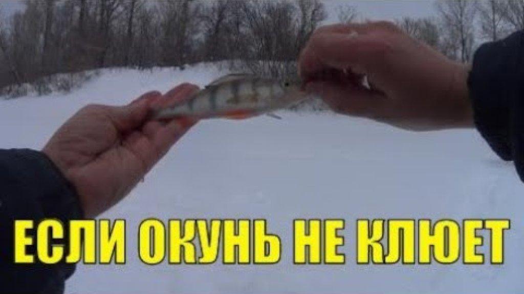 Что делать если не клюет окунь. Китайский эхолот Fish finder