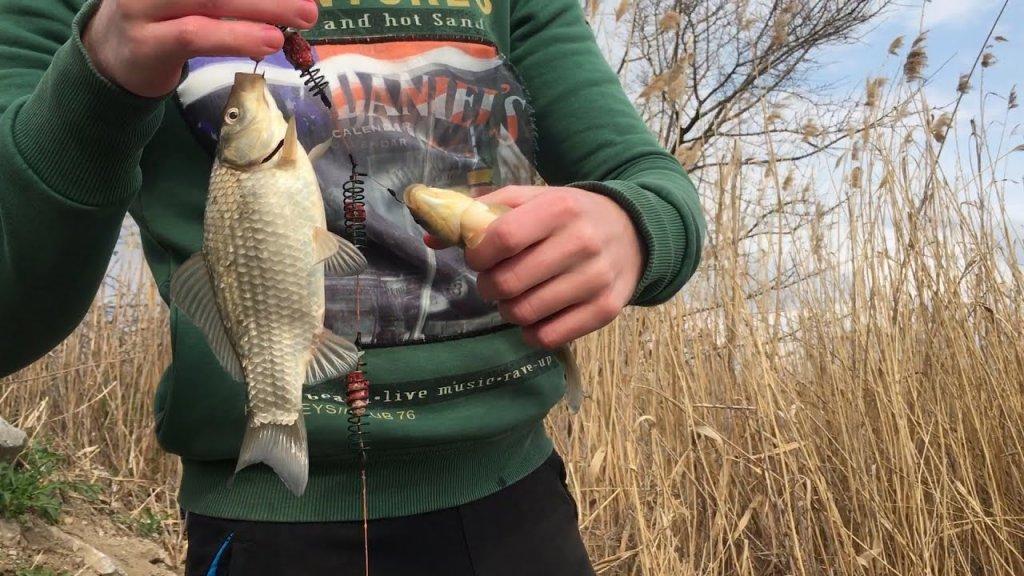 Ловим крупных карасей весной. Рыбалка на карася в Запорожье. Каховское водохранилище Плавни-Грузовые