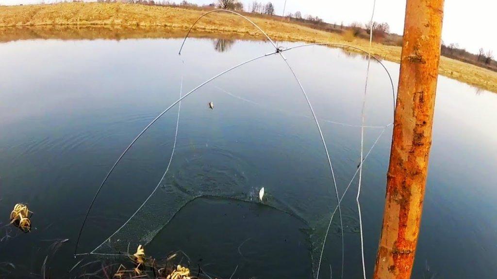 Стрим с реки, рыбалка 2020 в нсо на паук-карась есть в сибири