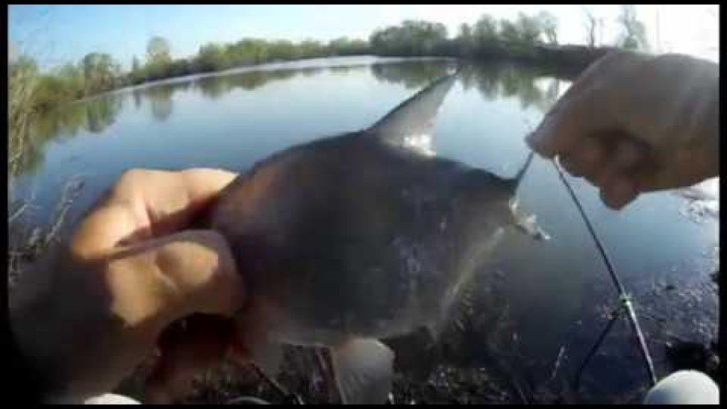 Рыбалка видео отчёт 30.04.2020 Подлещик на удочку