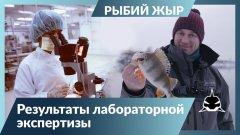 Можно ли есть рыбу из Москва-реки?!   Рыбий жЫр 6 сезон.