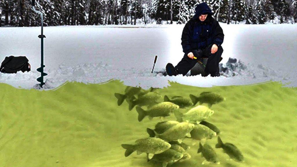 Ловля леща на поплавок зимой