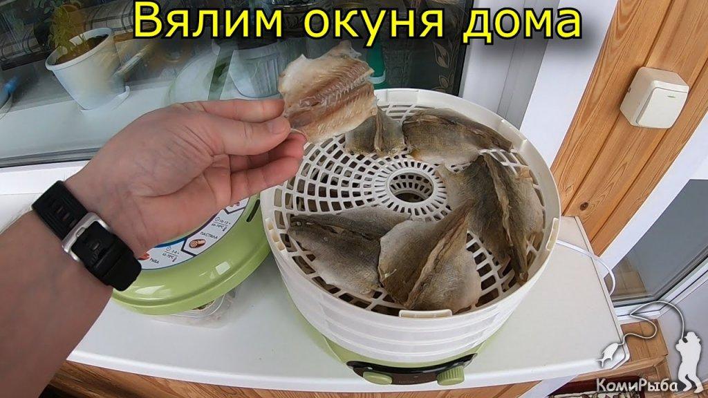 Как завялить рыбу (окуня) в домашних условиях. Мой личный способ засолить и вялить окуня