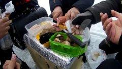 Ловля судака на зимней рыбалке.