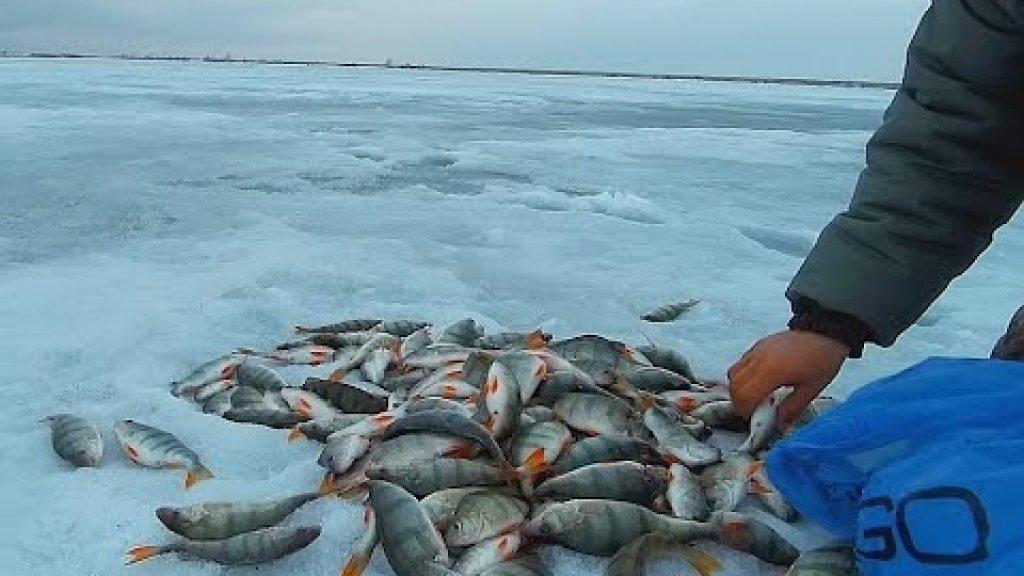 Удачная рыбалка в этом году. Закрытие зимнего сезона. Подводные съемки.