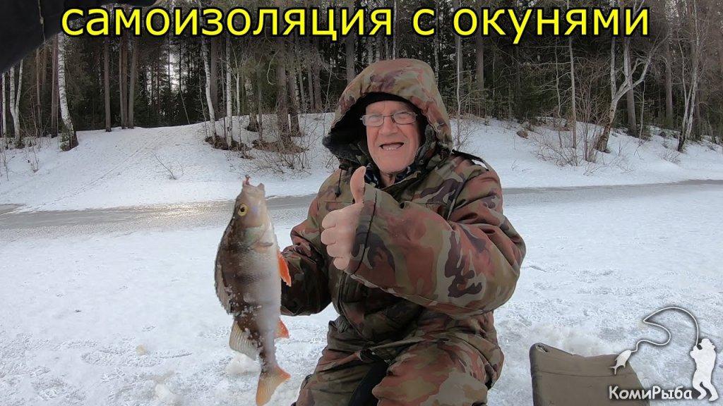 Самоизоляция с окунями. Зимняя рыбалка 2020. На собаке за окунем