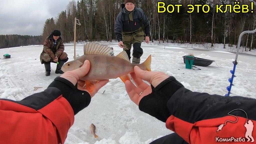 Зимняя рыбалка 2020. Крупный окунь на мормышку. Республика Коми