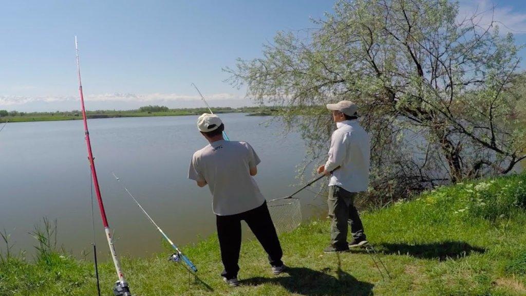 рыбалка в Алматы, ловим толстолобика на технопланктон