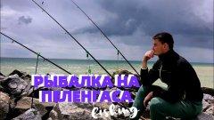 Рыбалка на пеленгаса 2020 🌊 рыбалка на азовском море 🎣 трудовая рыбалка в запорожской области.