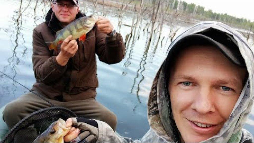 Рыбалка в окуневом котле. Открытие сезона  2020
