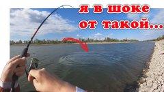 Рыбалка с берега. Крайний заброс и поклевка