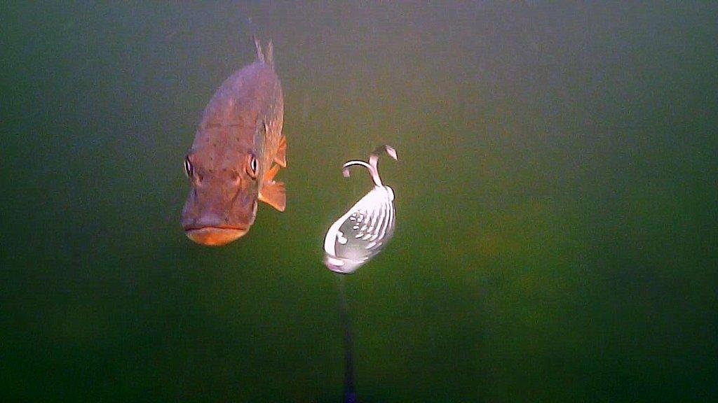 Рыбалка на спиннинг с Подводными камерами! Щука на блесну