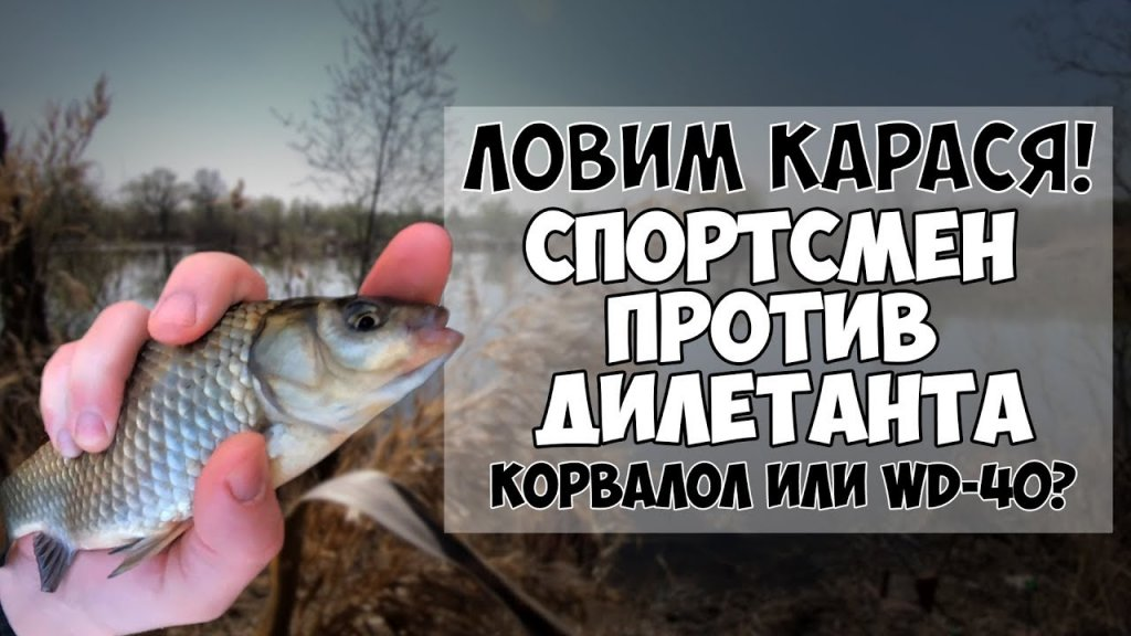 Открытие рыбалки на карася весной. Эксперимент: спортсмен против дилетанта (0:1).