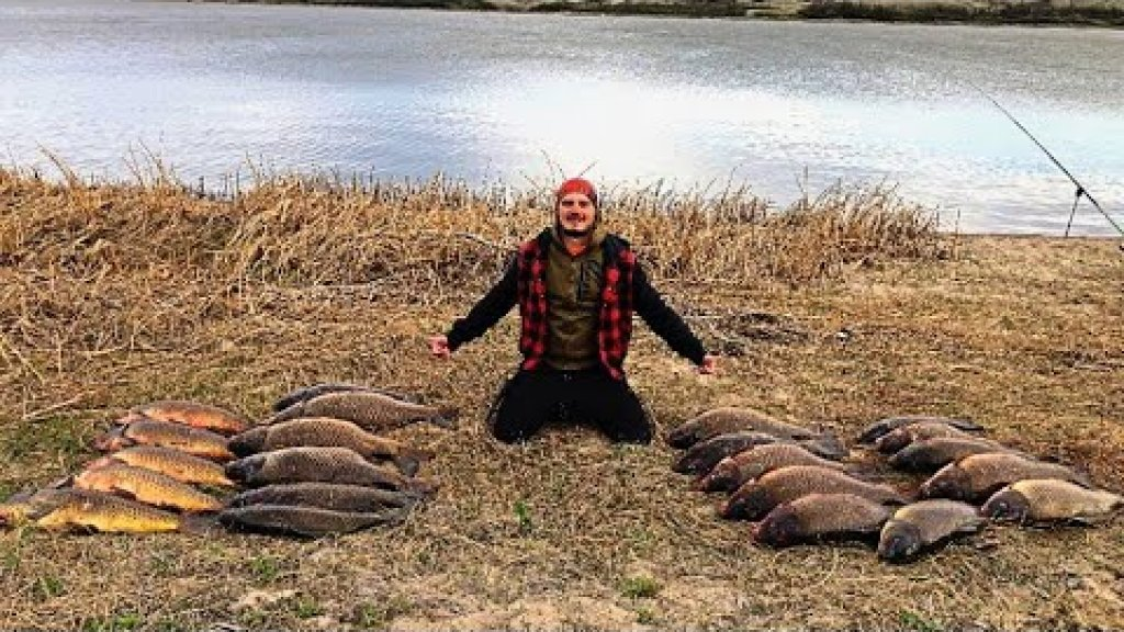 Сотни киллограмм сазана на простую снасть на крючек. Часть 2. Рыбалка в Канаде. Last Mountain Lake