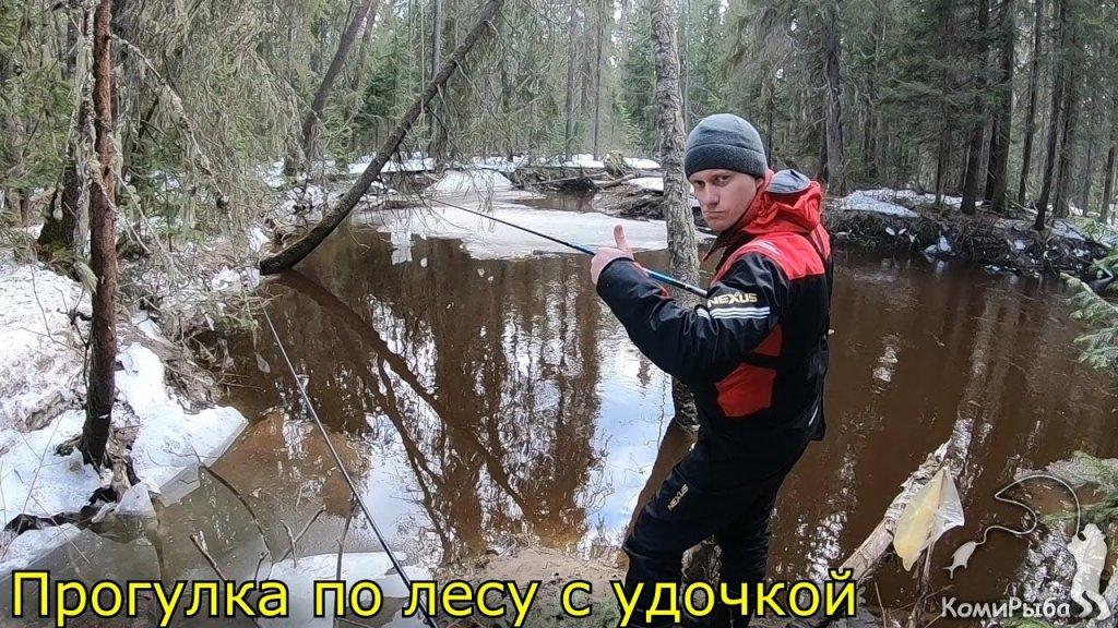 Прогулка с удочкой по весеннему лесу. апрель 2020