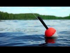 Рыбалка на щуку и окуня на поплавок. Рыбалка на поплавок.