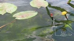 Паролоновая убийца карася | снасть на поплавочную удочку и скользящий поплавок с кормушкой