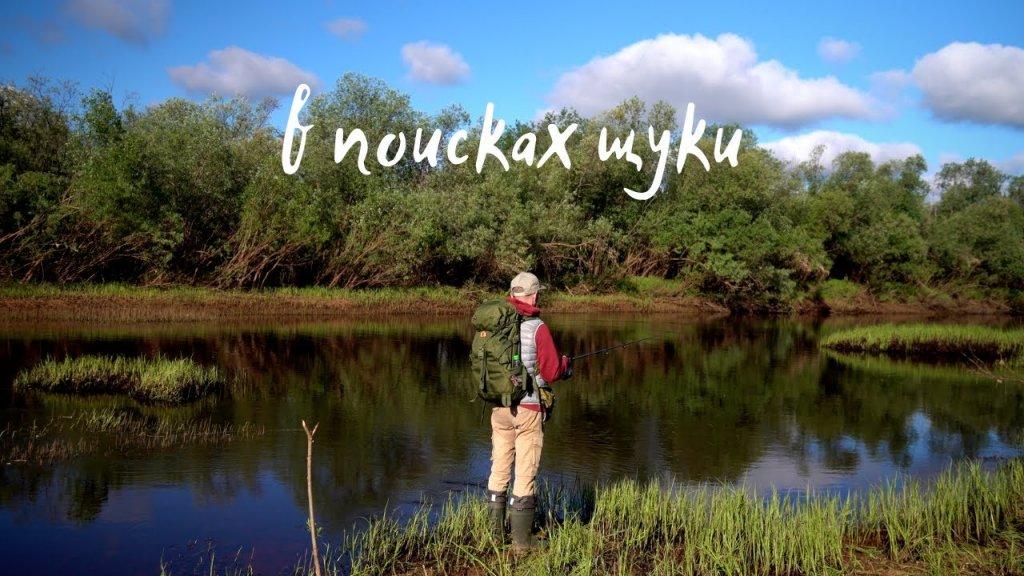 В ПОИСКАХ ЩУКИ / Рыбалка на спиннинг в июне / 4К