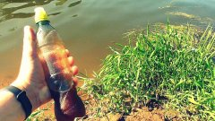 Ликвид Робин Ред своими руками! Реакция рыбы! Подводная съемка
