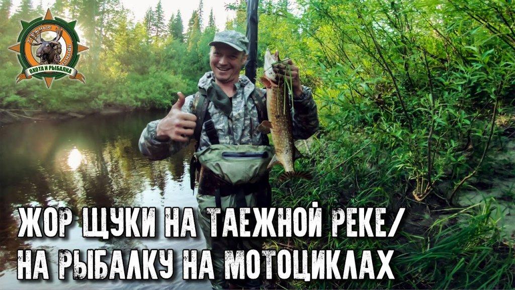 Приключения на мотоциклах!/Супер-рыбалка на таёжной реке/Щука ломает спиннинги!