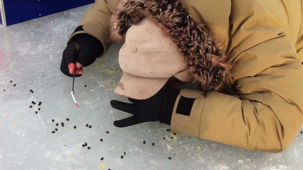 Типичный Шведский метод рыбалки. Зачем носят с собой коврик?