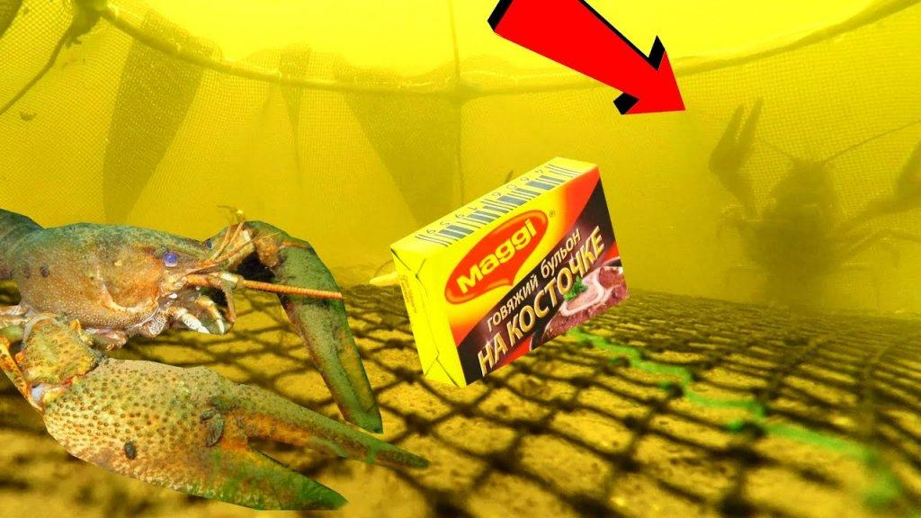 Раки лезут в Раколовку на Бульонные кубики! Подводная съемка