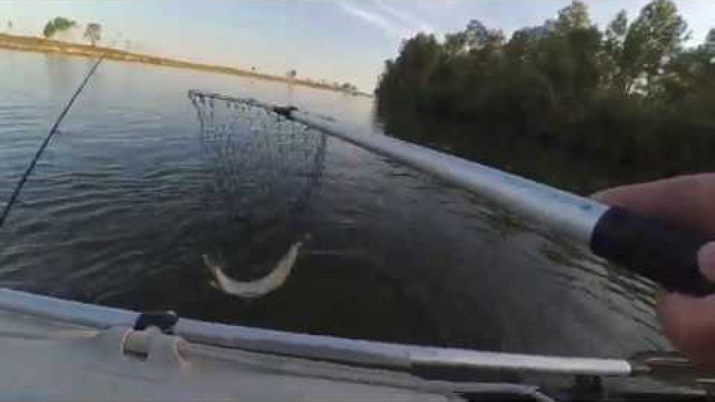Рыбалка с лодки в солнечный денёк, поймал комплект рыбы для ухи
