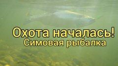 Охота началась! Симовая рыбалка.Вишневый лосось Сахалина. Сахалинская рыбалка & Sakhalin fishing