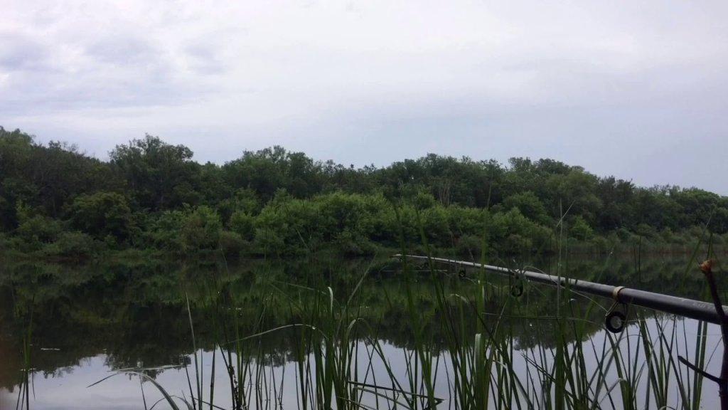 Иргиз - Рыбалка на удочку. Попал под ливень,жарю сосиски на костре
