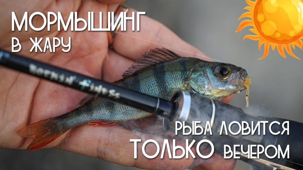 Мормышинг рыбалка в жару  Рыба ловится только вечером