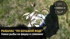 """Рыбалка по """"Большой воде"""" в последние весенние дни. Ловля рыбы на фидер и спиннинг."""