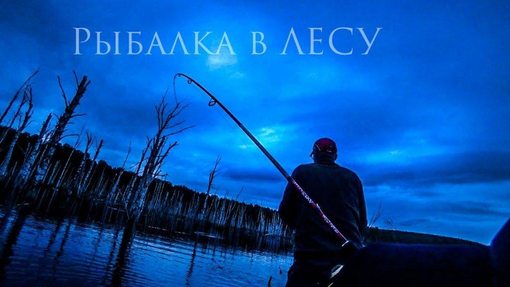 """Романовский """"рыбалка в лесу"""""""