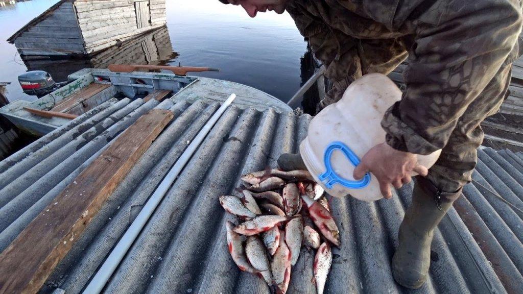 Весенняя рыбалка на сетями по большой воде в затопленном лесу.