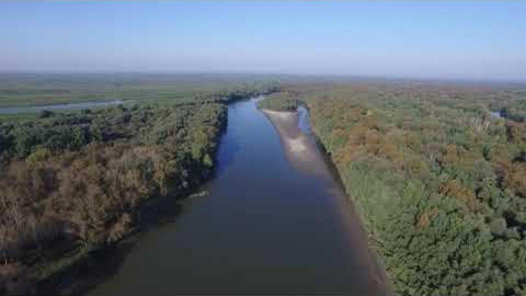 Вид с высоты птичьего полета Старая Обь и протока Заломная.
